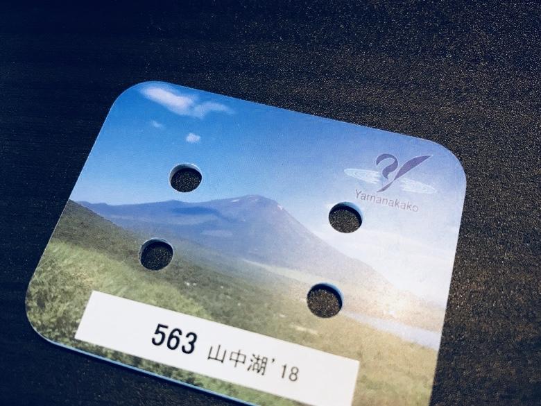 山中湖計測チップ