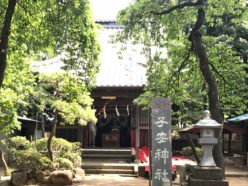 小安神社夏祭り 御神輿