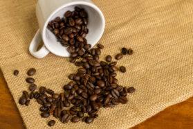 コーヒーアレルギー